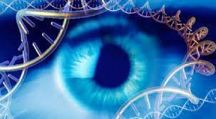 درمان کوری با ژن درمانی ممکن شد